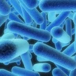 Legionnaires bacteria found in Newtownabbey special needs school
