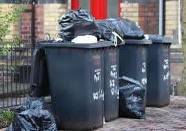 Plans for new waste incinerator to extract black bin rubbish