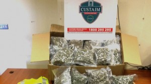 The herbal cannabis drugs haul seized by Customs in the Republic