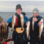 NO CODDING…INDIAN SUMMER HELPS ANGLERS HOOK FISH GALORE