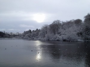 Picturesque Hillsborough Lake in Co Down