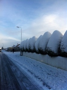 Snow Glengormley 1
