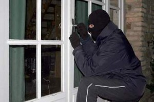 Burglars are targeting homes for gardening equipment