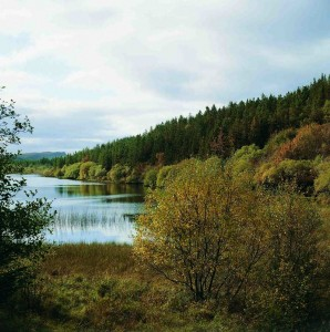 Lough Navar Forest, Co Fermanagh.