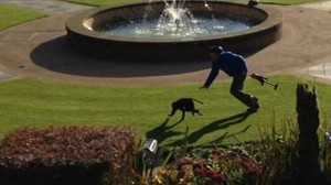 A macaque was dramatically caught last week in the grounds of Belfast Castle