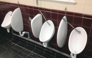 Sinn fein toilets
