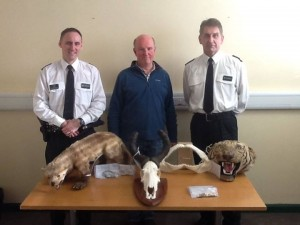 Police put on display parts of endangered species seized today